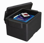 Medium FileGuard with Removable Tray - Black [GF30S-FS-SEN]