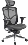 Fuzion Luxury High Back 26'' W x 27.5'' D x 46'' H Adjustable Height Executive Chair - Black Mesh [FUZ9LX-HI-W09-1-FS-EURO]