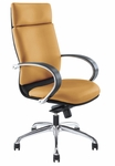 Hollie Modern High Back Chair with Nylon Belt [HOL004-FS-IZZ]