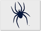 Richmond Spiders Shop