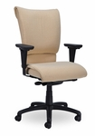 Saddle 300 Series High Back Single Shift Quick Set Back Height Task Chair [SA210-Q22-FS-SEA]
