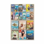 Safco Magazine Pamphlet Display -6 Mag/12 Pamphlet -30'' x 2'' x 49'' -Clear [SAF5600CL-FS-SP]