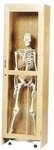Science Lab Roll-In Skeleton Cabinet [377-2422-DW]