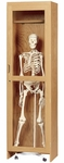 Science Lab Mobile Wooden Locking Skeleton Cabinet - 24''W x 22''D x 84''H [377-2422-DW]