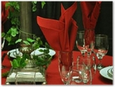 Table Linen Napkins