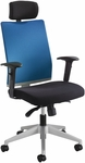 Tez™ Adjustable Height High Back Manager Chair with Headrest- Calypso [7030CO-FS-SAF]