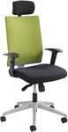 Tez™ Adjustable Height High Back Manager Chair with Headrest - Wasabi [7030WA-FS-SAF]