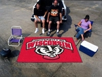 University of Wisconsin Team Mascot Ultimat 60'' x 96'' [5127-FS-FAN]