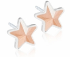 Medical Plastic 6mm Golden Rose Star Earrings