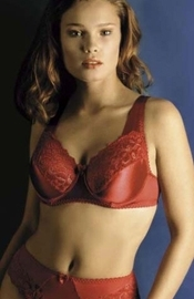 Evelyn - Full Figure Bra and Brief