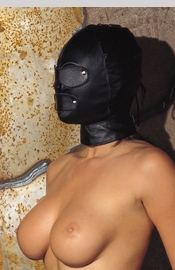 Face mask with detachable eye covers and mouth piece, with back zipper