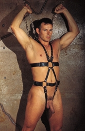 Hanging Body Harness with Crotch Straps and Chains