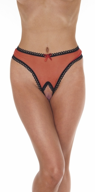 Love Me - Mesh Open Crotch Thong Panty