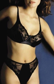 Sense and Sensibility - Full Figure Bra and Panty Set
