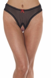 The Temptress - Mesh Open Crotch Briefs Panty