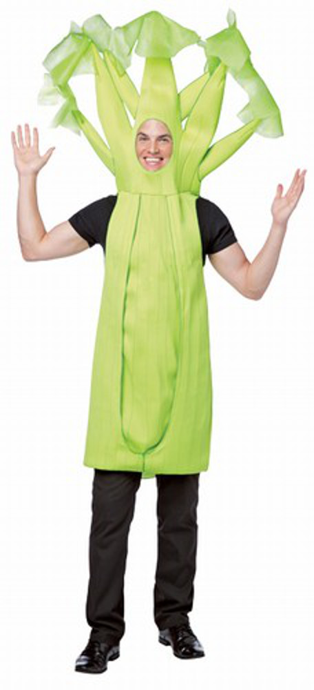 adult celery costume healthy food costumes