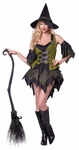 Adults Bewitching Babe Costume