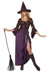 Adults Salem Witch Costume