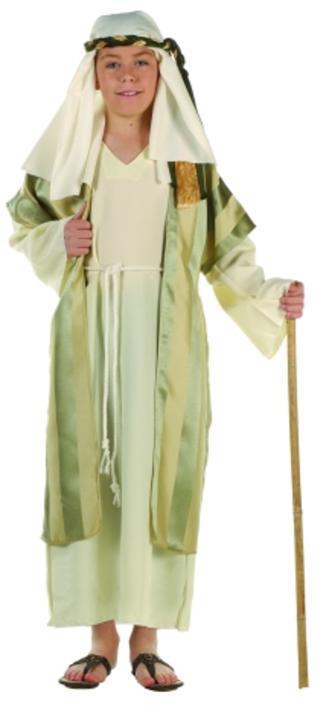 Child Deluxe Green Shepherd Costume