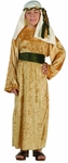 Child Gold Velvet Wiseman Costume