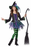 Childs Festive Witch Costume