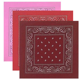 Double Sided Paisley Bandanas