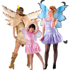 Fairy Costume Accessories