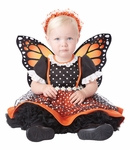 Infants Butterfly Kisses Costume