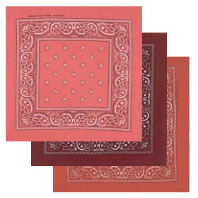 Other Paisley Bandanas