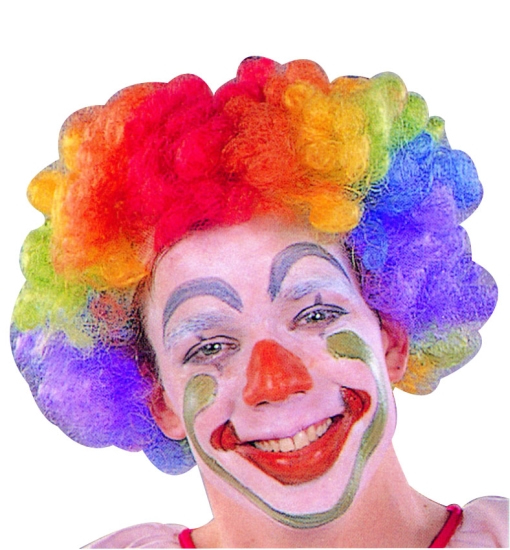 Rainbow Clown Wigs 73