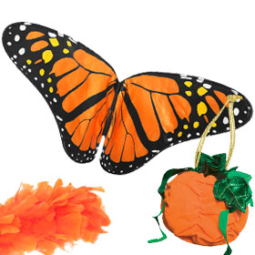 Unique Orange Costume Accessories