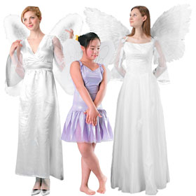 White Costume Wings