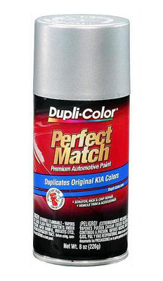 Hyundai / Kia Perfect Match® Touch-Up Paint Satin Silver Metallic Color Code S6