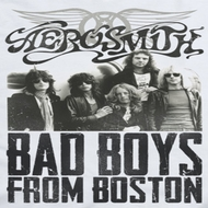 Aerosmith Bad Boys Shirts