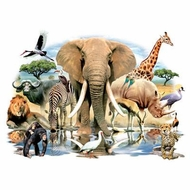 African Oasis Wildlife T-shirt