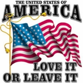 America USA T-Shirt - Love It Or Leave It Adult Tee