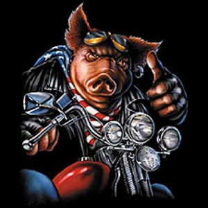 Biker T-shirt - Hog Motorcycle Tee Shirt