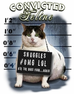 Convicted Feline Funny Cat Tee Shirt