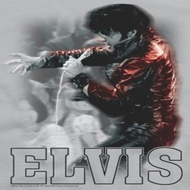 Elvis Presley Black Leather Shirts