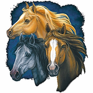 Horse Shirt - Three of a Kind Horses Adult Tee Shirt