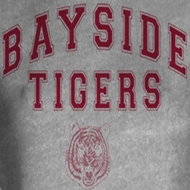 Saved By The Bell Juniors Shirt Bayside Arch Grey Tee T-Shirt