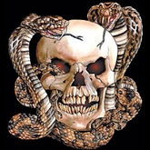 Skull T-shirt - Skull with Two Snakes Tee