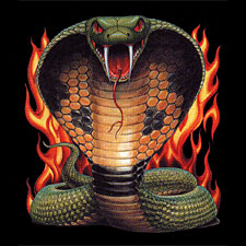 Snake T-shirt - Snake with Flames Biker Tee