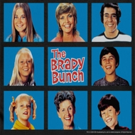 The Brady Bunch Framed Shirts