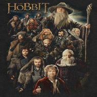 The Hobbit Somber Company Shirts