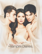 Vampire Diaries In Bed Shirts