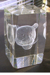 Crystal Lazer etched Cougar Paperweight / Award