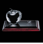 Elegant Apple Award with Distinction