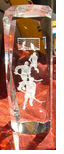 Hockey Crystal Laser Award/figurine