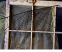 Half Spider Web - Round Top Fall Collection